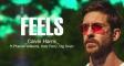 Трек Calvin Harris - «Feels» став платиновим в США